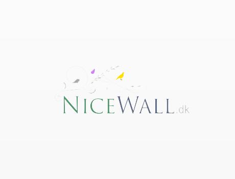 Nicewall rabatkode